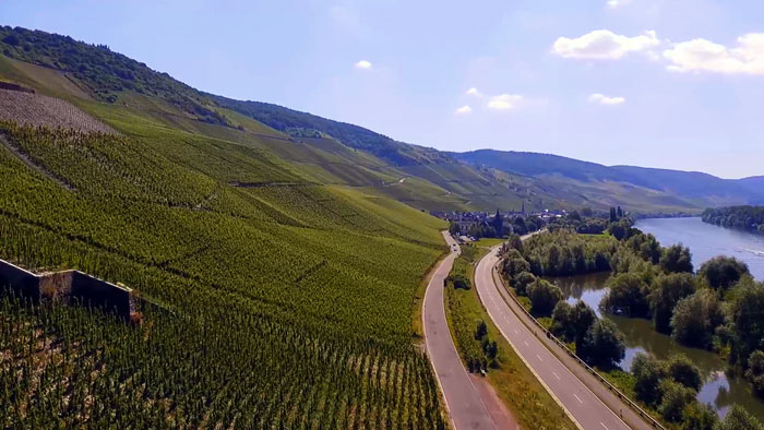Виноградники Мозеля
