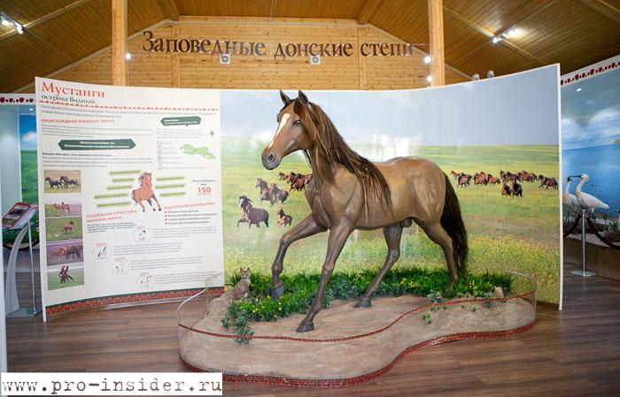 Музей заповедника
