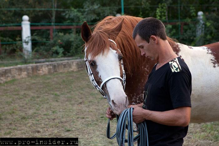 Великокняжеский конный завод
