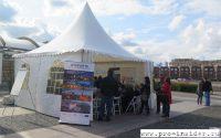 1-й фестиваль «Вышеградской четверки» в Москве
