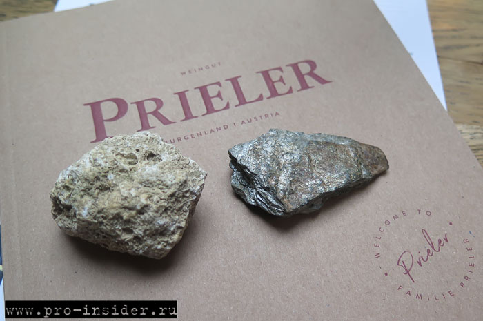 Дегустация австрийских вин Prieler