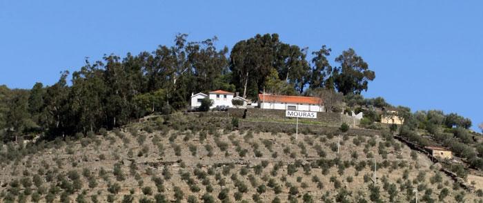 Quinta da Viega